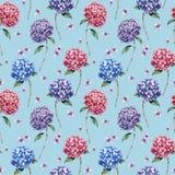 Aquarellmuster mit Rosa und blauer Hortensie Handgemalte blaue, violette, rosa Blumen mit Blättern und Niederlassung lokalisiert lizenzfreie abbildung
