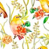 Aquarellmuster Tropische Vögel und Blumen Stockfoto