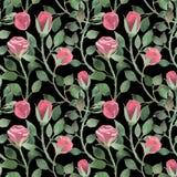 Aquarellmuster von Rosen und von Stämmen mit Blättern auf einem schwarzen Hintergrund stockfoto