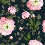 Aquarellnahtloses Blumenmuster Blühen Sie empfindliches Muster von Blumen Eustoma, Lysianthus vektor abbildung
