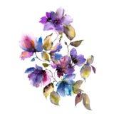 Aquarellpurpurblumen Herbst mit Blumen Ausführliche vektorzeichnung Autumn Floral Design Blaue Auslegung vektor abbildung