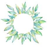 Aquarellrahmen mit Grünblättern und -niederlassungen Stockfoto