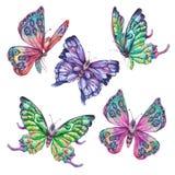 Aquarellsatz bunte Schmetterlinge der Weinlese lizenzfreie abbildung
