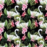 Aquarellschwanmuster Lizenzfreies Stockfoto