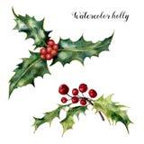 Aquarellstechpalmensatz Handgemalte Stechpalmenniederlassung mit der roten Beere lokalisiert auf weißem Hintergrund Weihnachtsbot vektor abbildung
