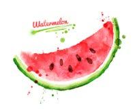 Aquarellwassermelone Stockfotografie
