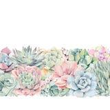 Aquarellweinlese Succulents-Grußkarte Stockfotografie