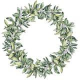 Aquarellwinter-Blumenkranz Handgemalte Snowberryniederlassung mit der weißen Beere lokalisiert auf weißem Hintergrund Weihnachten lizenzfreie abbildung