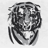 Aquarellzeichnung des verärgerten schauenden Tigers Tierporträt auf weißem Hintergrund stock abbildung