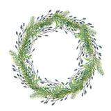 Aquarellzusammensetzung des Aquarells für Fichtenzweige und dekorative Niederlassungen vektor abbildung
