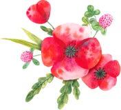 Aquarellzusammensetzung mit wilden Blumen lizenzfreie abbildung