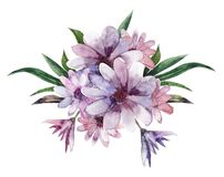 Aquarellzusammensetzungen oder Blumensträuße von purpurroten Blumen stock abbildung