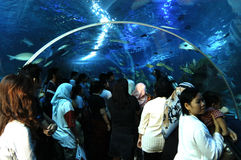 Aquaria KLCC Stock Photo