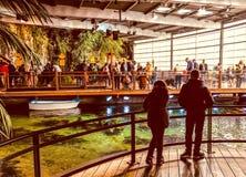 Nausicaa Boulogne royalty free stock photos