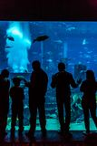 Aquarium énorme dans un hôtel l'Atlantide à Dubaï sur les îles de paume Photos libres de droits