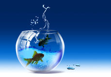 Aquarium. Containers of glass with the function of aquarium where to the inside they are present two fishes Royalty Free Stock Photos