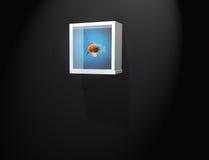 Aquarium stock abbildung