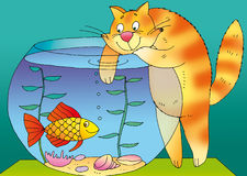 Aquarium. Red tom-cat and aquarium Stock Photos