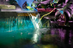 Aquarium. Bright aquarium for your home Stock Image