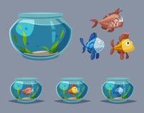 Aquarium avec de l'eau clair Illustration de vecteur de dessin animé illustration stock