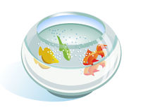 Aquarium avec des poissons Images stock