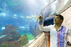 Aquarium Barcelona Royalty Free Stock Images