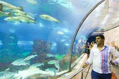 Aquarium Barcelona Royalty Free Stock Image