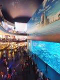 Aquarium bij de Wandelgalerij van Doubai Stock Foto's