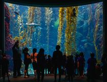 Aquarium of California ScienCenter