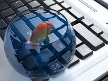 Aquarium. On a computer keyboard Royalty Free Stock Image