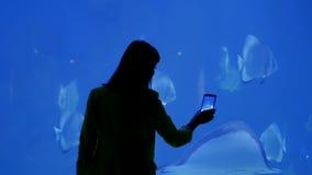 Aquarium dans Hurghada, Egypte Monde sous-marin fascinant et technologies modernes Grande pastenague de poissons banque de vidéos
