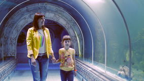 Aquarium dans Hurghada, Egypte Tunnels sous-marins, un monde sous-marin fascinant et technologie moderne clips vidéos