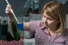 Aquarium de nettoyage de jeune femme avec de bêtas poissons à la maison images stock