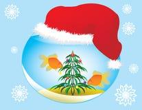 Aquarium de Noël Photo libre de droits