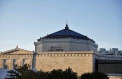 Aquarium de Shedd, Chicago, l'Illinois photos stock