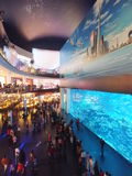 Aquarium at Dubai Mall Stock Photos