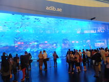 Aquarium at Dubai Mall in the UAE Royalty Free Stock Photos