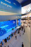Aquarium in Dubai Mall, world's largest shopping mall Royalty Free Stock Images