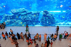 Aquarium in Dubai Mall, world's largest shopping mall Royalty Free Stock Photos