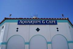 Aquarium et café Photographie stock libre de droits