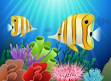 Aquarium with fish and corals. Marine aquarium.  illustration Royalty Free Stock Photography