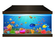 Aquarium with fish and corals. Marine aquarium. illustration Stock Images