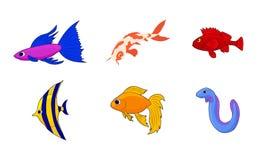 Aquarium fish icon set, cartoon style. Aquarium fish icon set. Cartoon set of aquarium fish vector icons for web design isolated on white background Stock Photo