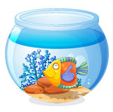 An aquarium with a fish. Illustration of an aquarium with a fish on a white background Stock Image