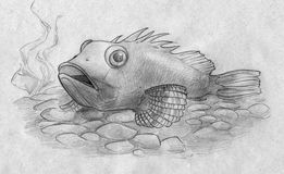 Aquarium fish among the peebles. Hand drawn pencil sketch of an aquarium fish resting on the bottom of the tank among decorative peebles and algae Stock Photo
