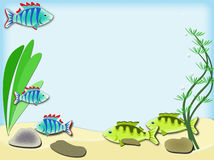 Aquarium with fish. Sea bottom with fish, seaweed, sea sand and stones Royalty Free Stock Photos