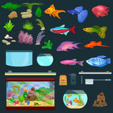 Aquarium fish, seaweed underwater, banner template layout with marine animal Royalty Free Stock Photography