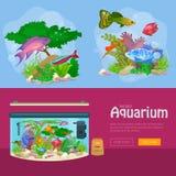 Aquarium fish, seaweed underwater, banner template layout with marine animal Stock Photography