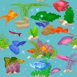 Aquarium fish, seaweed underwater seamless pattern vector illustration Stock Photos