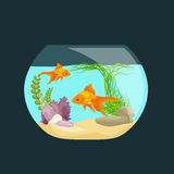 Aquarium fish, seaweed underwater, tank isolated on dark background. Vector illustration Royalty Free Stock Image